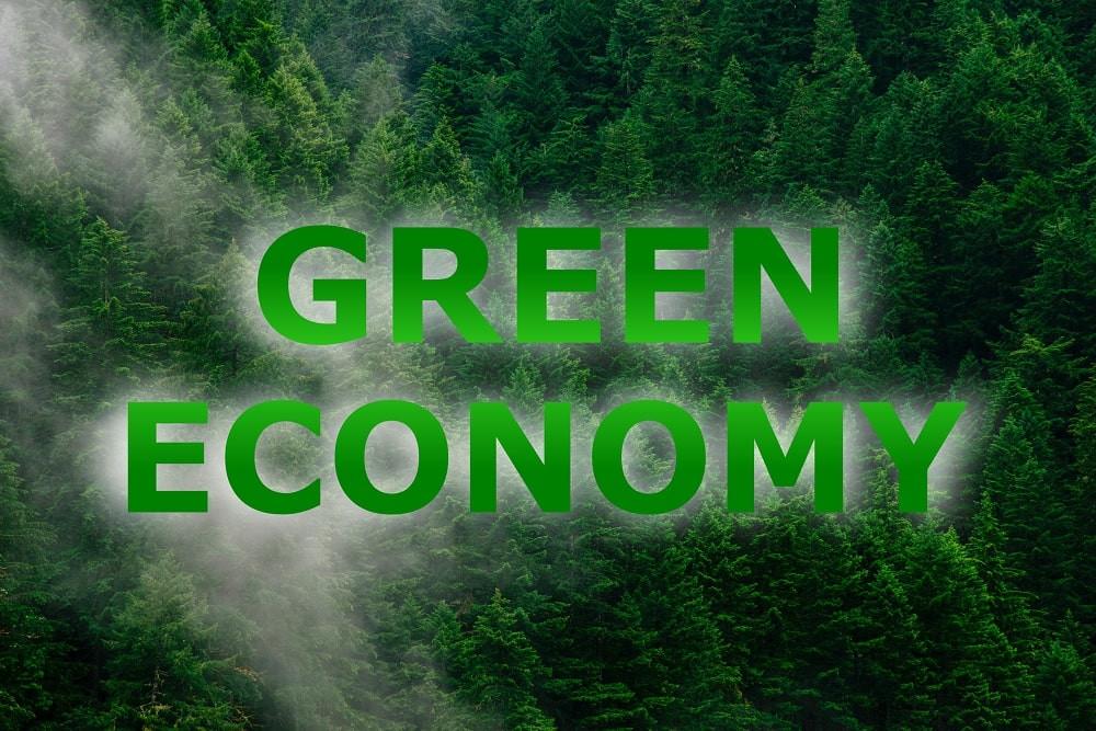 Green Economy, economia sostenibile verde per aziende M&G Consulting - meg consulenze