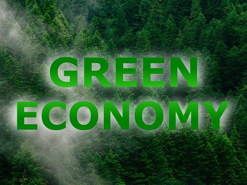 GREEN ECONOMY - THE ECONOMY OF THE FUTURE