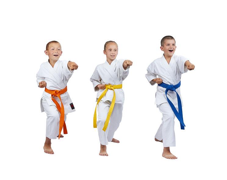 kids karate, karte ipswich,
