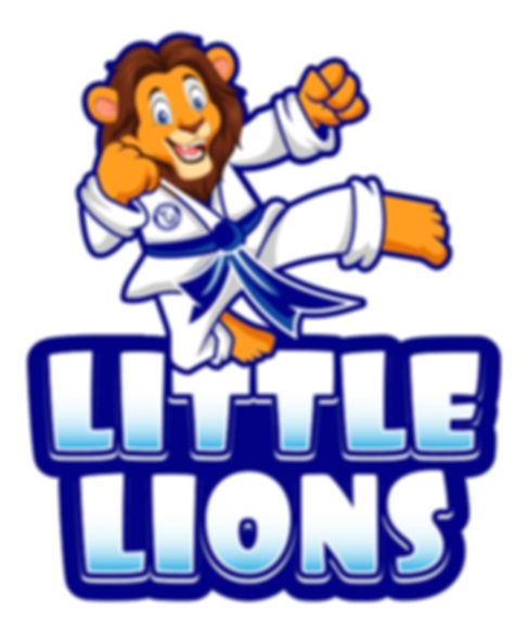 Little Lions karate