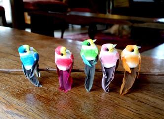 Les oiseaux - centre socio-culturel de la Bugallière - Orvault
