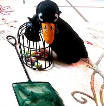 Les oiseaux ont commencé à construire leurs nids