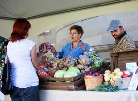 Stay-at-home culture bolsters pop-up markets, old-style corner grocers