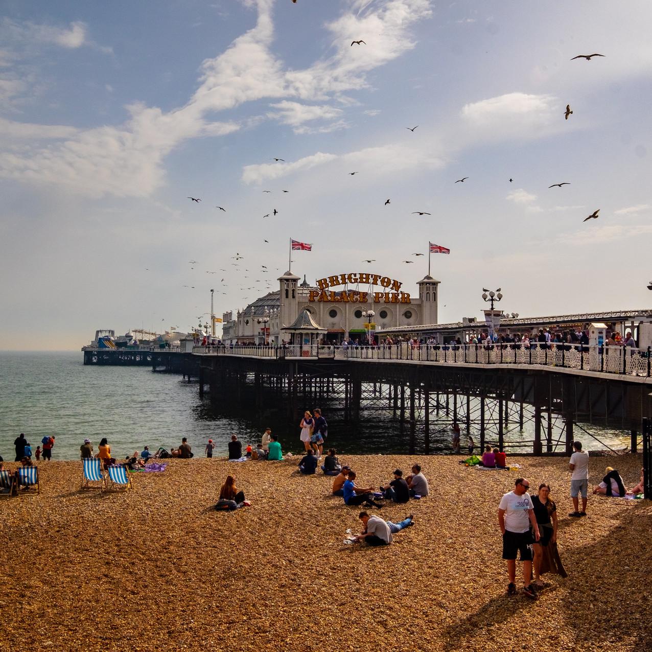 A Brief Guide to Living in Brighton Brighton beach, Brighton Pier