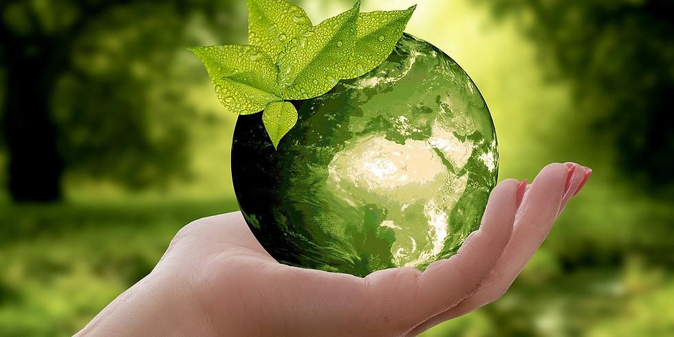 Nachhaltigkeit im Fokus