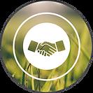ESSE_Guarantee_WebIcon.png