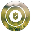 ESSE_Warranty&ProtectionPrograms_Icon.pn