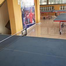 Table Tennis Arena