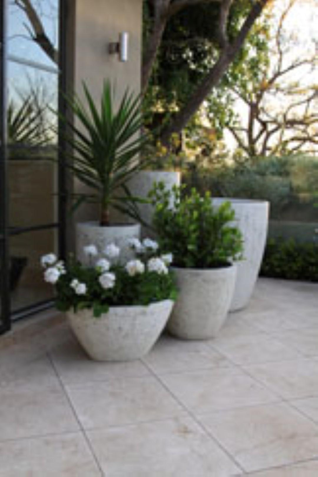 Chelsea Range of Pots