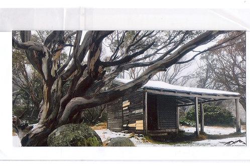 Card - Pretty Valley Hut