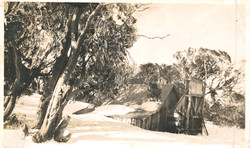 Wallaces Hut, late September 1945