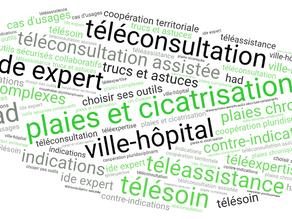 Le bilan initial de plaie lourde et complexe : la place de la téléconsultation assistée ?