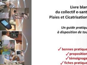 Livre blanc du collectif e-santé Plaies et Cicatrisation (2016)