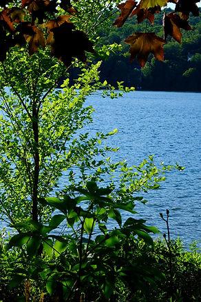 Photo du lac - un joyaux à protéger et préserver