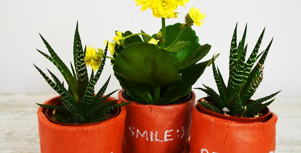 Love,Smile,Be Happy El Yapımı Saksılı Tasarım