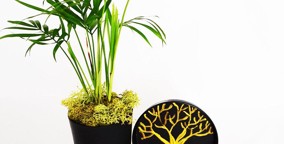 Hayat Ağacı Serisi Gold ve Tekli Chamadore