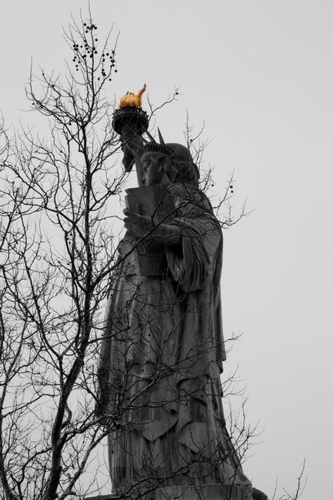 Ms. Liberty #1