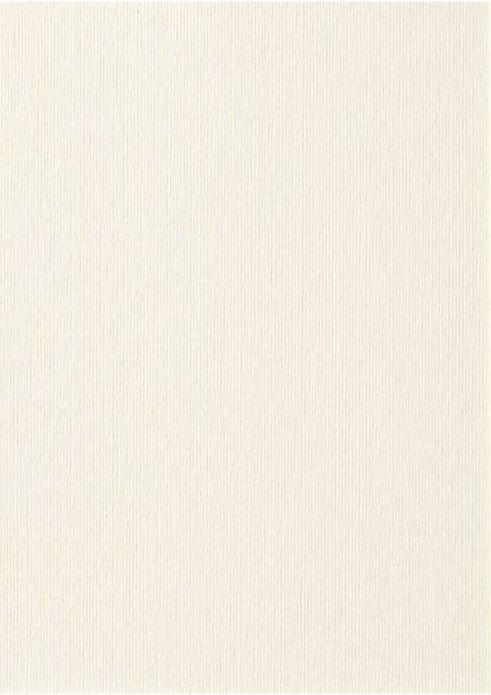 cartoncino-avorio-a4-verticale.jpg