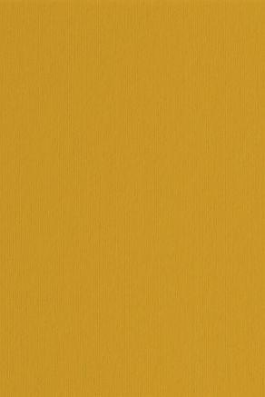 cartoncino-giallo.jpg