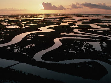 Aerial-of-the-Mississippi-River-Delta-Wa