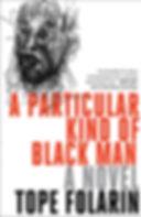 A Particular Kind of Black Man.jpg
