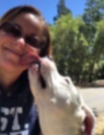 Jennifer; fur baby; fur babies; cat sitting; dog walking; pet sitter; pet care