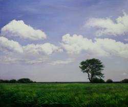 여름의 풍요72.7cmX60.6cm유화