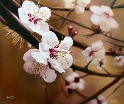 봄의향기72.7cm X 60.6cm유화