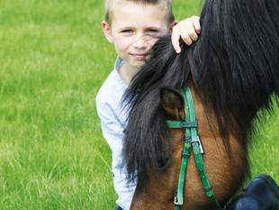 DIMANCHE 22 SEPTEMBRE Journée nationale du cheval et du poney