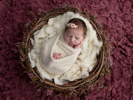 Sweet Sienna | Illawarra Newborn & Baby Photographer | Nina Photography (Wollongong)