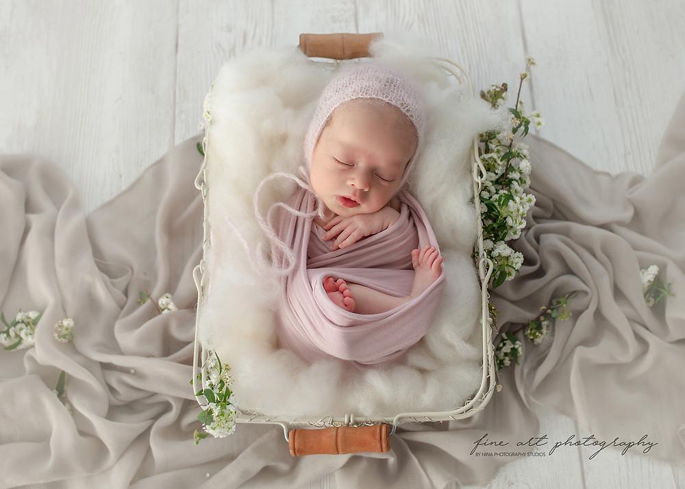 wollongong twin baby photos
