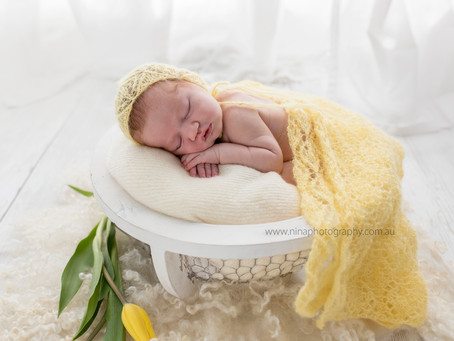 Blossoming love | Illawarra Newborn & Baby Photographer | Nina Photography (Wollongong)