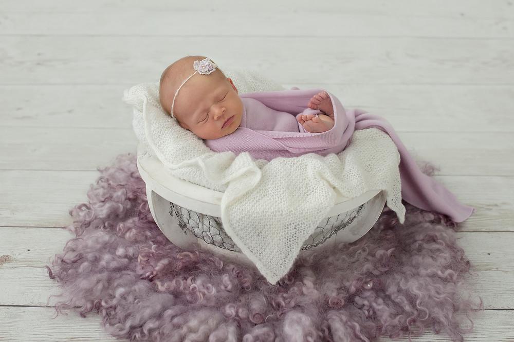 wollongong newborn