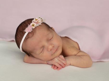 Sofia | Wollongong Newborn Photography | Nina Photography Studios (Illawarra)