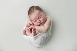 Newborn Photography   Wollongong