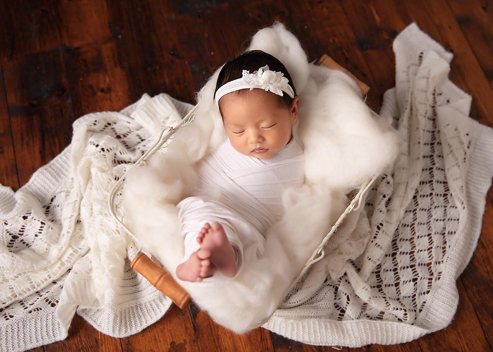 wollongong baby photos