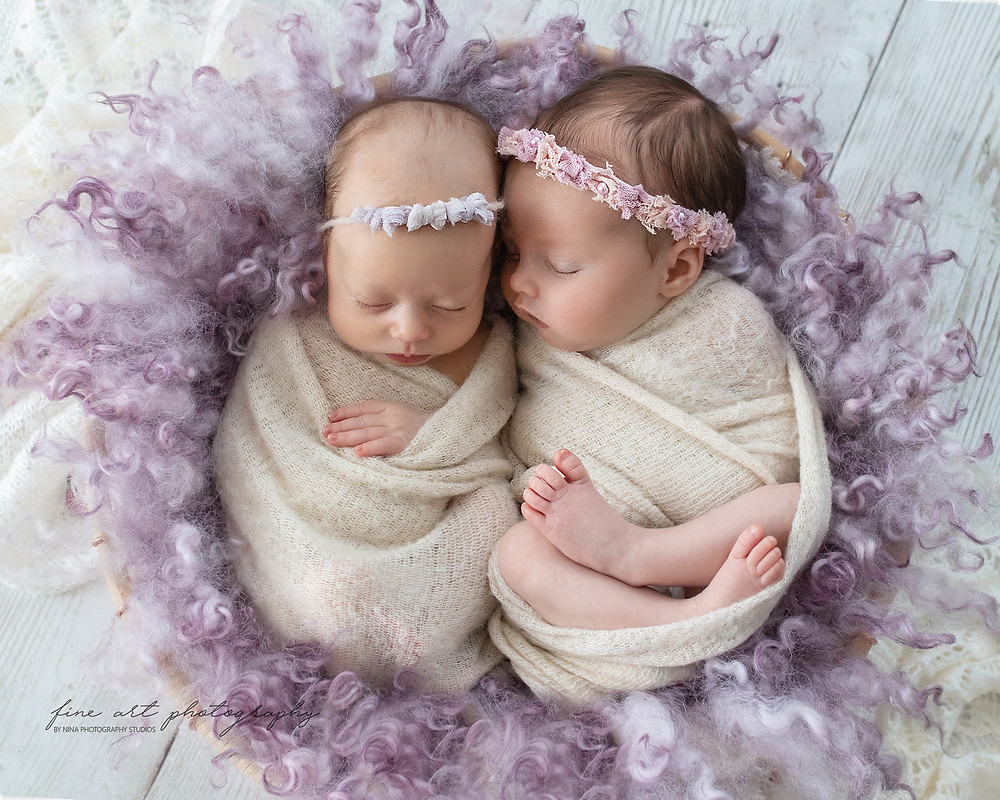 wollongong twin baby photos