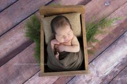 Baby Photography   Wollongong