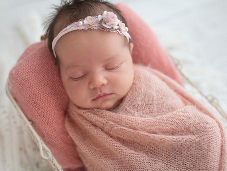 Rose amoung the thorns | Illawarra Newborn Photography | Nina  Photography Wollongong