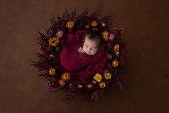 Newborn Photography | Baby Photography | Children Portraits | Fine Art Portraiture | Family Photography | Illawarra Photographer | Wollongong Photographer