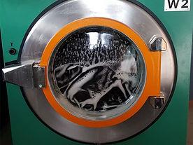 Waschen_Waschmaschine_bea.jpg