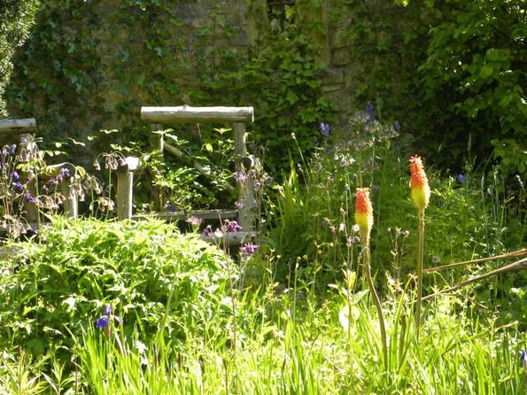 A hillside cottage garden
