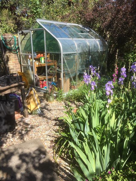 Organic haven