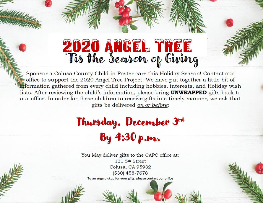 Angel Tree Flyer 2020.jpg