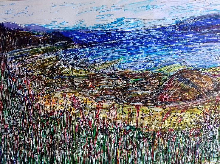 View towards Arran, Carradale, Kintyre