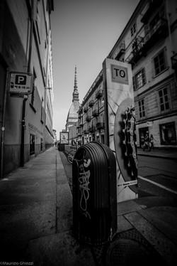 2014 Torino