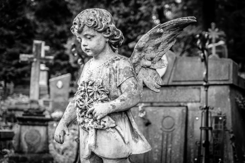 Lviv Cimitero di Lychakiv
