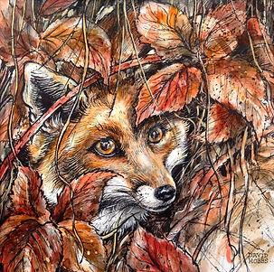 Fox, brambles