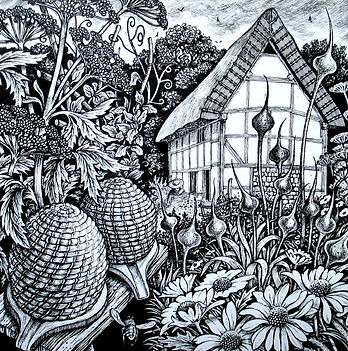 Pen and ink drawing of Poplar Cottage, Weald and Downland Museum, beehives, daisies, cottage garden