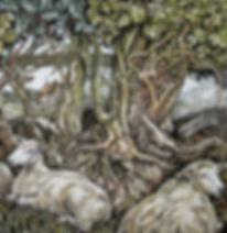 Sheep, hedgerow